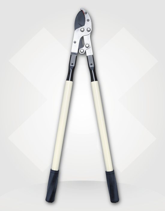 XQ-BTC-001